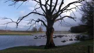 Kangoeroe Plof - Hoog Wotter.mpg