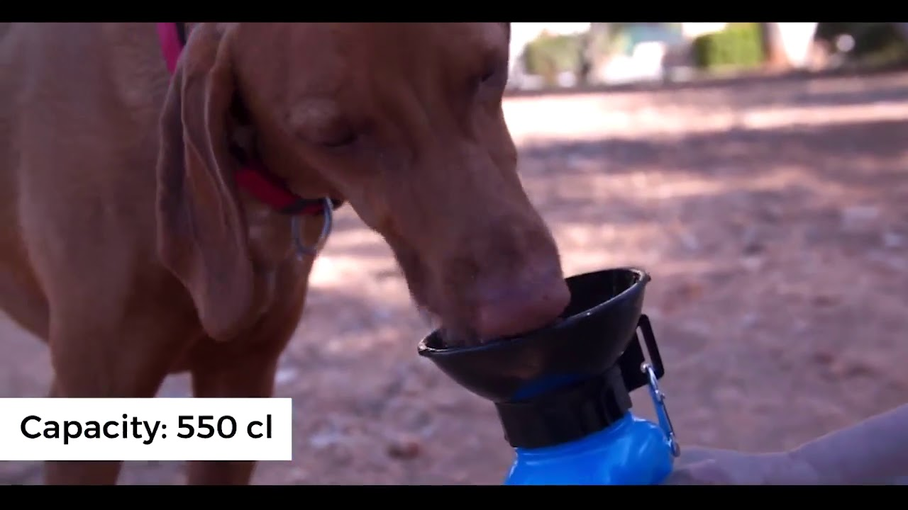 KEEP YOUR DOG HYDRATED ANYWHERE!