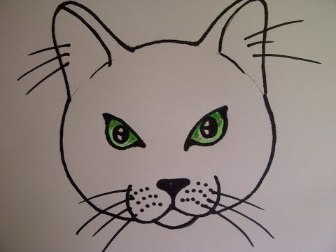 Cómo dibujar la cabeza de un gato. Cómo Dibujar Animales. Como hacer un dibujo para principiantes