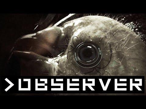 OBSERVER 👁️ 001: Abgefuckte Zukunft