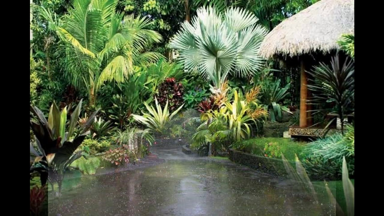 Ideas para jardines tropicales youtube - Ideas para jardines ...