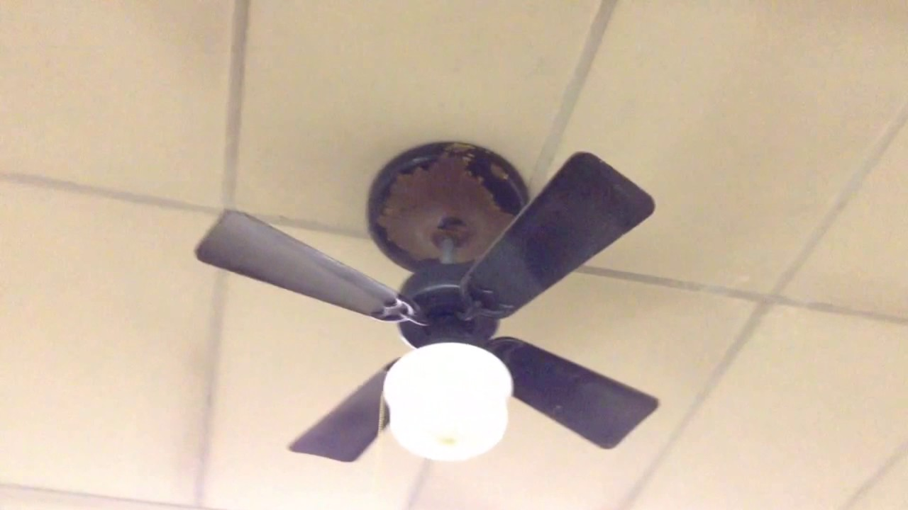 1950s hunter type h 36 ceiling fans with included fta footage 1950s hunter type h 36 ceiling fans with included fta footage aloadofball Image collections