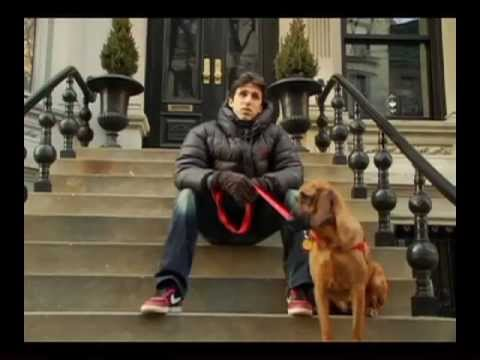 True Tails of New York - Sizzle Reel