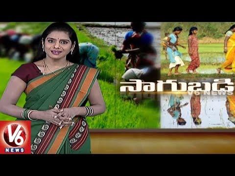 Success Story Of Organic Farmer Jagadish Reddy | Jagtial District | Sagubadi | V6 News