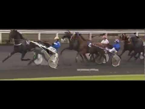 Prix De Bretagne 2012_Roxane Griff 1:12,5_E. Raffin