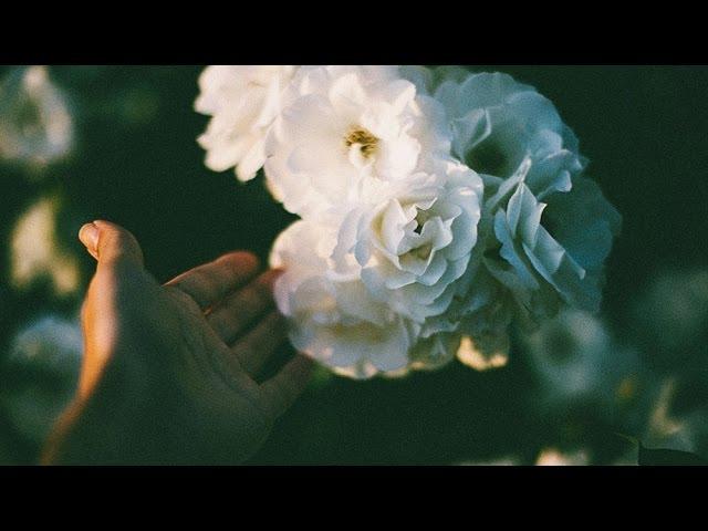 ben-lukas-boysen-only-in-the-dark-pleq-remix-ambient