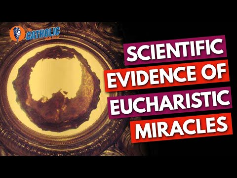 Scientific Evidence of Eucharistic Miracles   The Catholic Talk Show