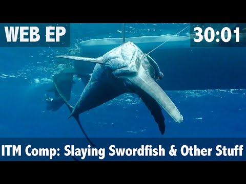 ITM Fishing Comp Slaying Swordfish And Lots Of Other Stuff