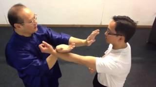 雲南詠春拳(小念頭)基本拳法第一段用法網上教學(1) thumbnail
