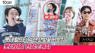 롯데월드타워 랜선벚꽃버스킹 🌸롯타와봄🌸 쿠키영상