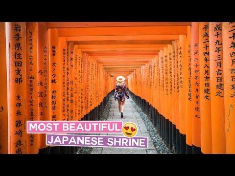 Exploring Fushimi Inari Shrine in Kyoto | Japan Vlog