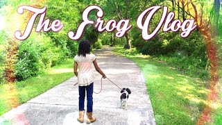 Video The Frog Vlog: Sunday Afternoon with the Froggies download MP3, 3GP, MP4, WEBM, AVI, FLV Agustus 2018