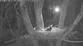 1-17-2019  5:19 pm Surrey Reserve - South thumbnail