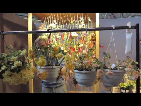 Fleurop-Interflora World Cup 2015 Highlights (theflorist.co.uk)
