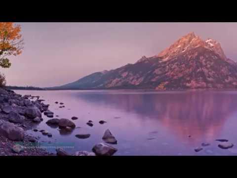 Толле Экхард - Новая Земля - слушать аудиокнигу онлайн бесплатно