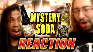 MAX REACTS: Chocolate Bacon Soda & More (Mystery Soda Taste Test)