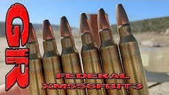 Best AR Ammo Pt 6 - Federal XM556FBIT3