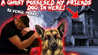 A GHOST POSSESSED MY FRIENDS DOG IN TOMS HAUNTED HOUSE! (REVENGE PRANK) | MOE SARGI