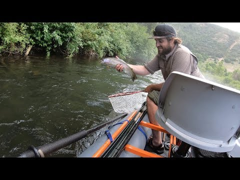 Summer Fly Fishing With Streamers On The Provo River