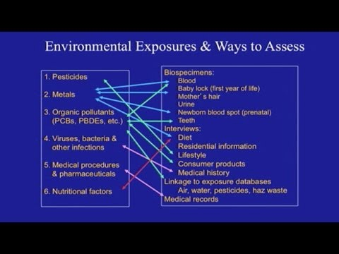 What Causes Autism?:  The Role of Environmental Exposures