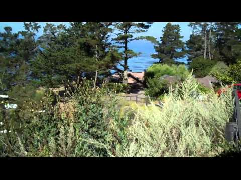 Yoga Retreat at Esalen, Big Sur USA with Julia Tindall