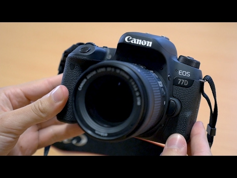 Canon 77D - Hands-On First Look (and comparisons to 80D)
