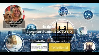 Scaling measuring through analytics by Magdaline Small at Linked Ventures Investor Summit