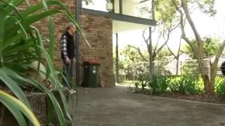 Deadly snakes nesting in Australian suburbs