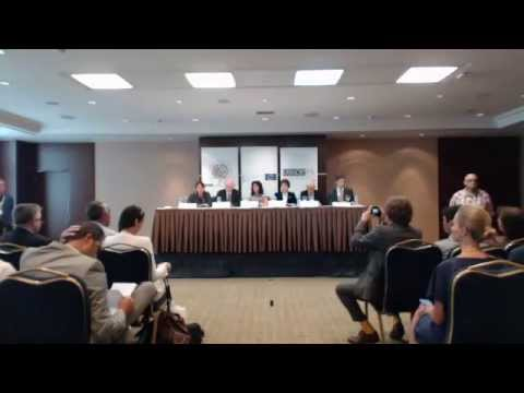 Turkey, Presidential Elections, 10 August 2014: Limited Elex Observation Mission Press Conference