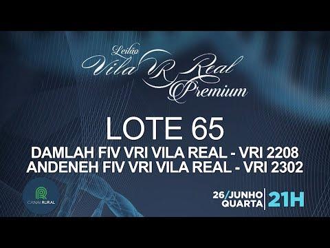 LOTE 65 (VRI 2208/VRI 2302)