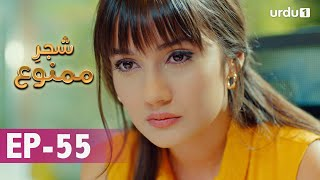 Shajar-e-Mamnu | Episode 55 | Turkish Drama  | Forbidden Fruit | Urdu Dubbing | 24 February 2021