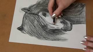 Как нарисовать ЛОШАДЬ. Легко и просто! / конь / Алёна Кот