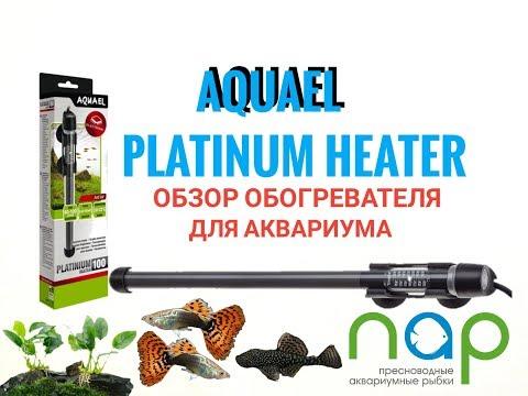 Обзор нагревателя Aquael Platinium