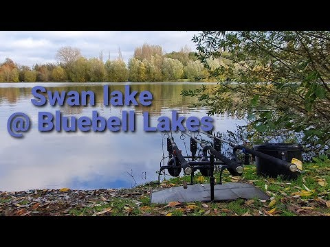 200 - Winter Carp Fishing @ Bluebell Lakes (Swan Lake)