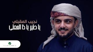 Najeeb Al Makbeli … Ya Taier Ya Za Almaali | نجيب المقبلي … يا طير يا ذا المعلي - بالكلمات