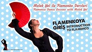 Melek Yel ile Flamenko Dersleri 1/Flamenco Dance Lessons 1, Introduction to Flamenco