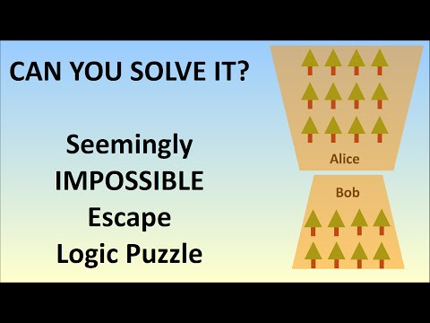 The Seemingly Impossible Escape Logic Puzzle