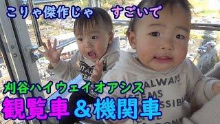 二卵性男女双子赤ちゃん生後12ヶ月(388日)お出かけの途中いつも目に入る...