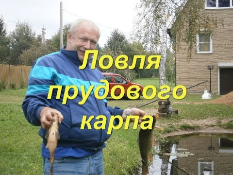 рыбалка на прудах и озерах