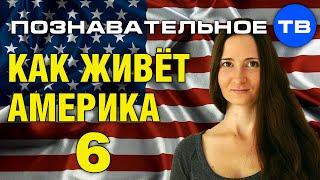 Как живёт Америка 6 (Познавательное ТВ, Наталия Локоть)
