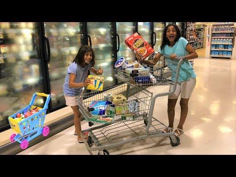 Kids Shopping at Supermarket for food!! family fun vlog