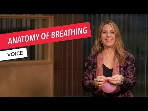 Voice Techniques: Anatomy of Breathing | Singing | Vocals | Voice | Berklee Online