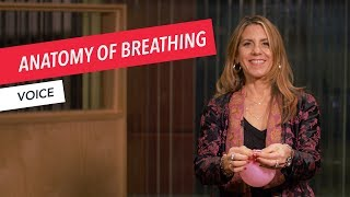 Voice Techniques: Anatomy of Breathing | Singing | Vocals | Voice | Berklee Online