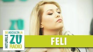 Feli & The TM Groove - Saraiman (Romica Puceanu) (Live la Marea Unire ZU)