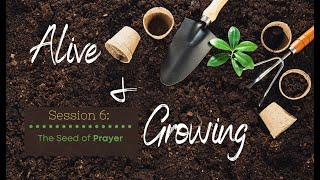 Sunday, July 26, 2020 - Alive & Growing Session 6 : The Seed of Prayer