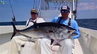 Удивительный навык ловли голубого тунца в море на спининг быстрая ловля тунца с большой лодкой