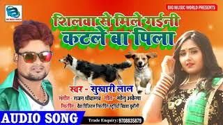 #Love_Speshal_Song_2020 | #Shilwa Se Mile Gaini Katle Ba Pila | #कटले बा पिला - Sukhari Lal
