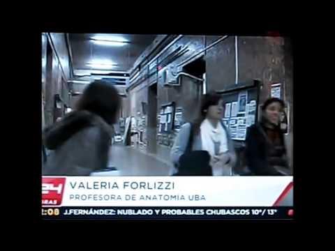 convenios internacionales de venezuela con argentina warez