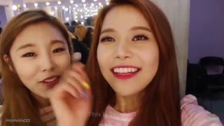 Mamamoo Funny Clip #36- Can You Handle This?!!