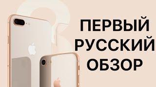 iPhone 8 и iPhone 8 Plus - первый обзор на русском